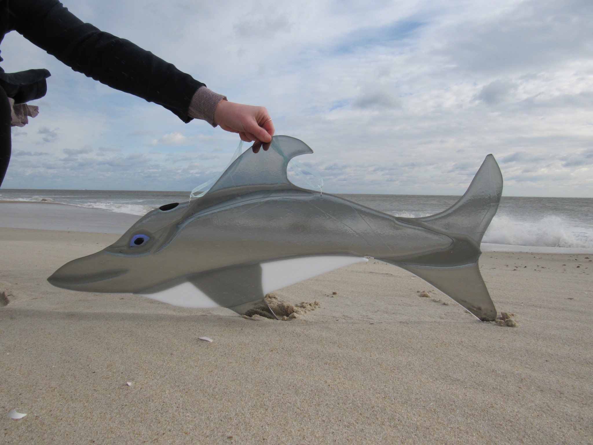 Custom Fused Glass Dolphin Lightcatcher.jpg