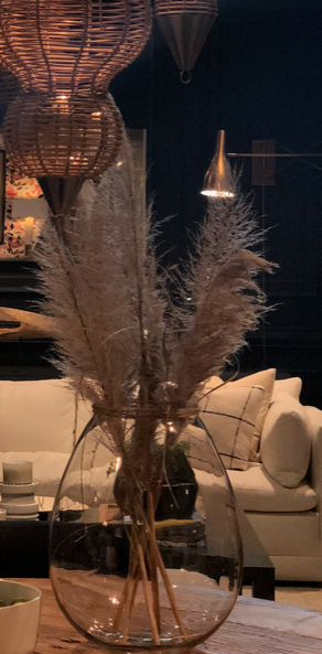 pampas-grass-design-high-point-market.png