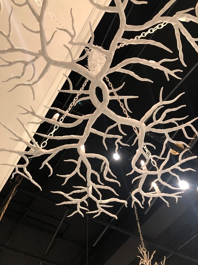 stephaniekrausdesigns-pa-mainline-interior-design-trends-2019-white-plaster-branched-chandelier-2