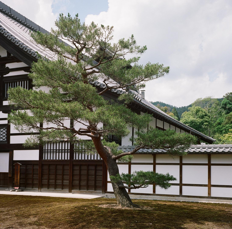 Japan Rollei-7.jpg