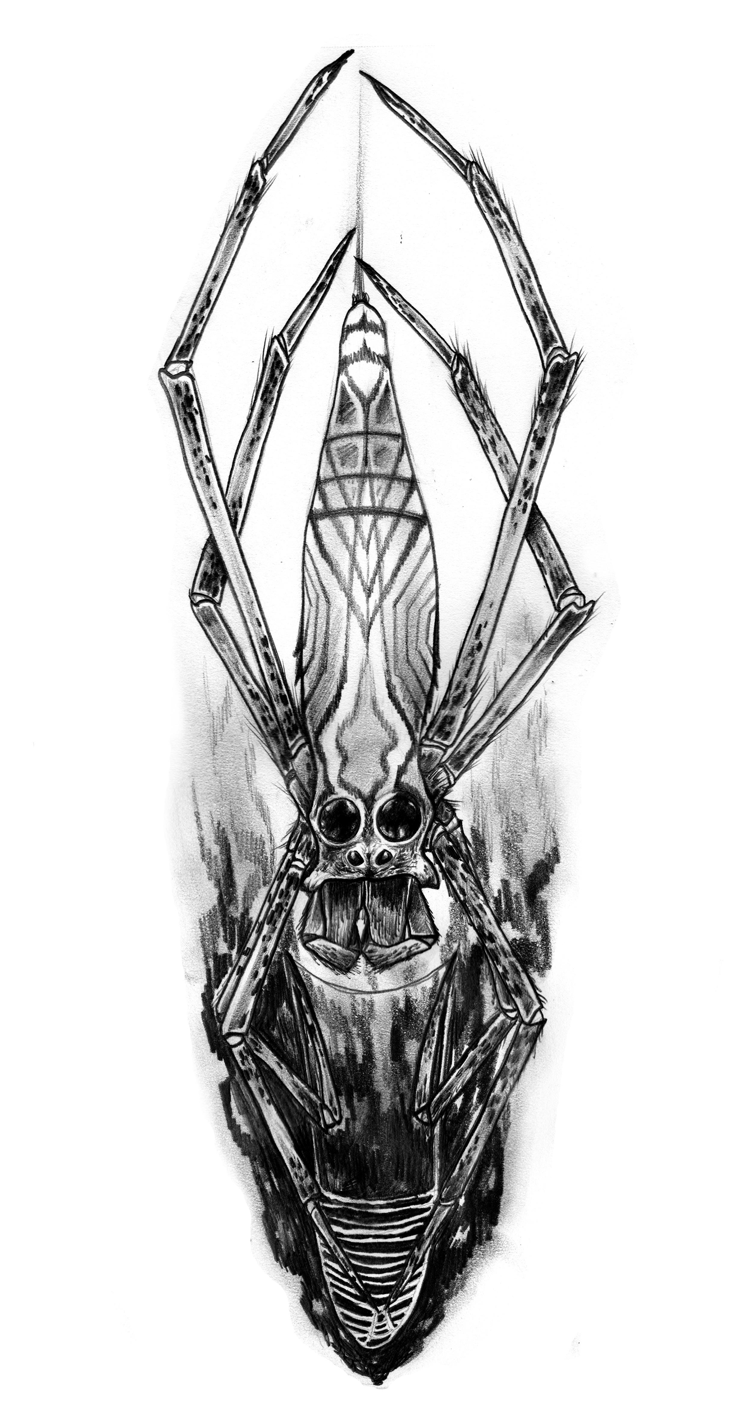 b_tattoo.jpg