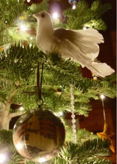 Dove and Unicorn 1-1-18 - JPEG Copy.jpg