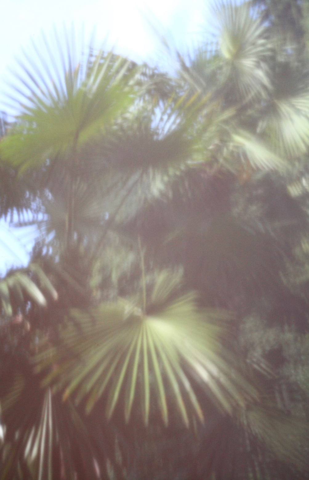 'View from the bedroom', 2011/15, Pinhole photograph, laser-print on 180gsm cartridge paper, 12 x 18 cm