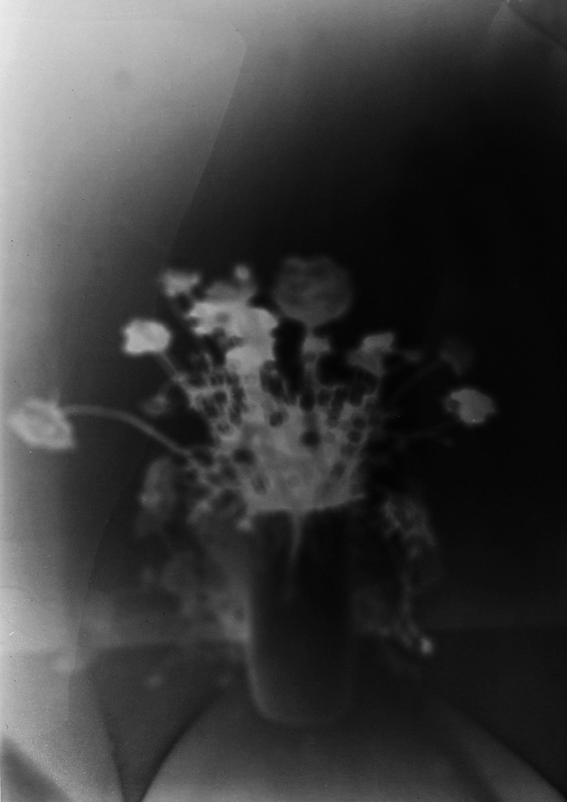 'Blumen II', 2011/15, Pinhole photograph, laser-print on 180gsm cartridge paper, 12 x 18 cm