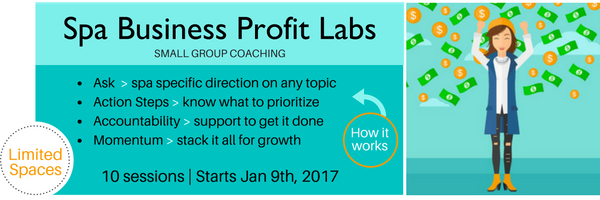 Spa Business Profit Labs (5).png