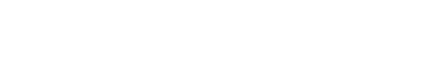 101stNZOpen.png