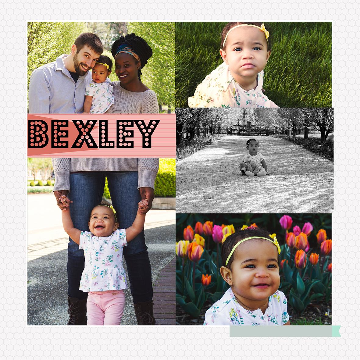 bexley8x8storyboardsm.jpg