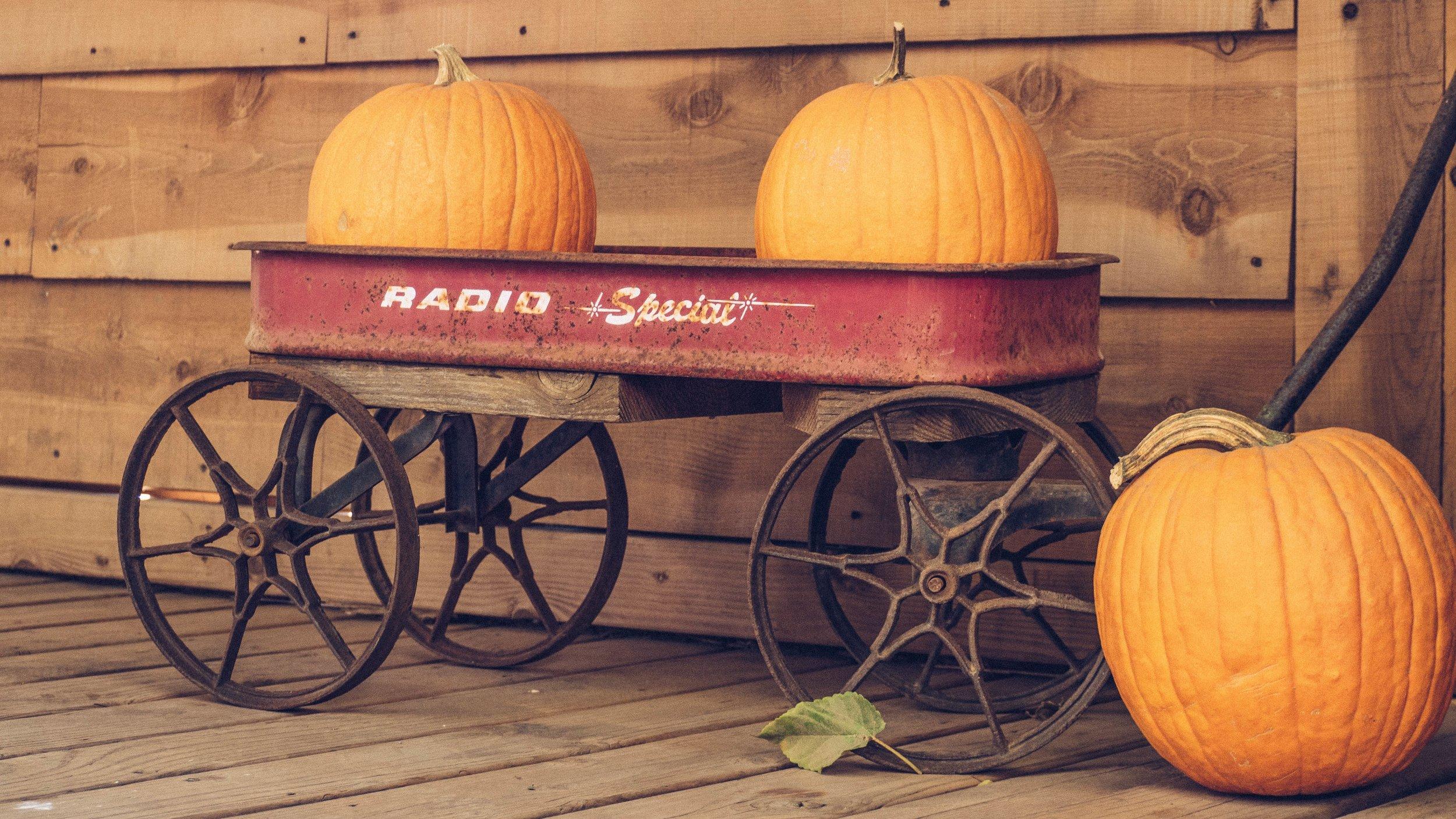 Photo courtesy of  unsplash.com