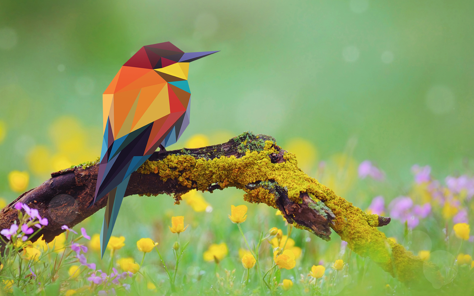 Low Poly Bird.png