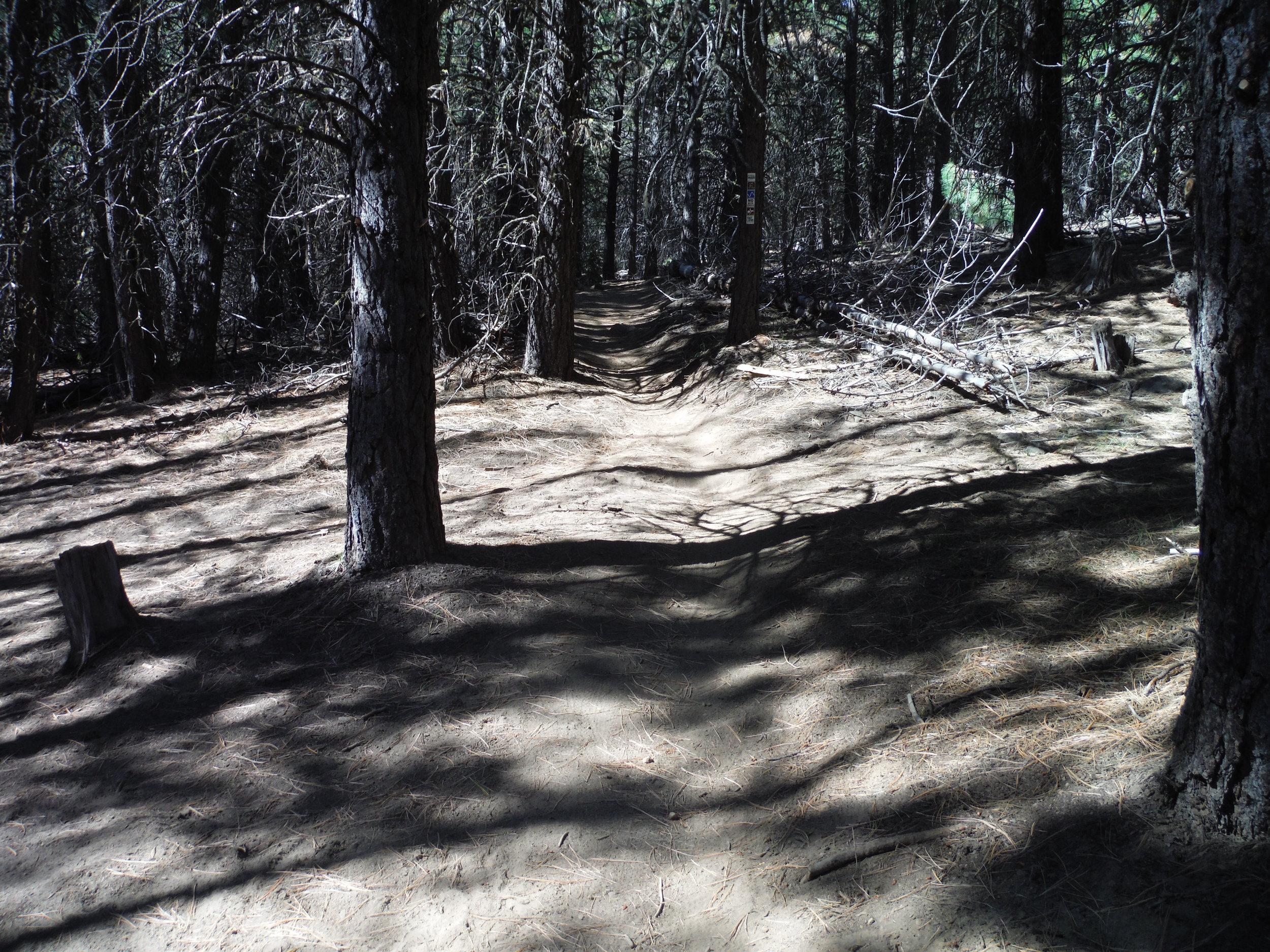trail-sample.jpg