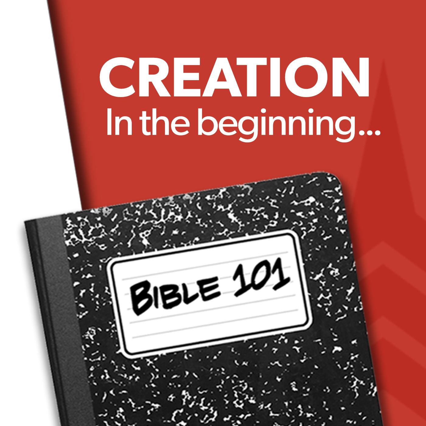 101 Creation.jpg