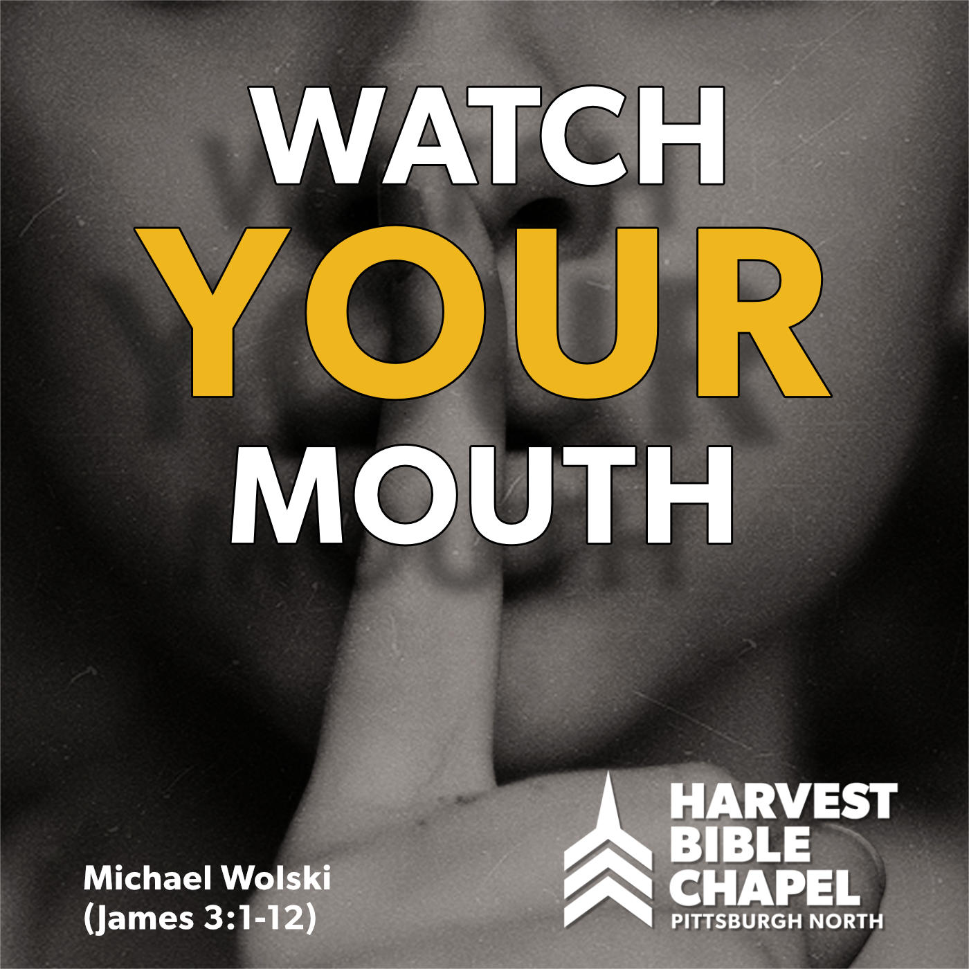 2019-JULY-GuestSpeakers-MikeWolski-WatchYourMouth.jpg