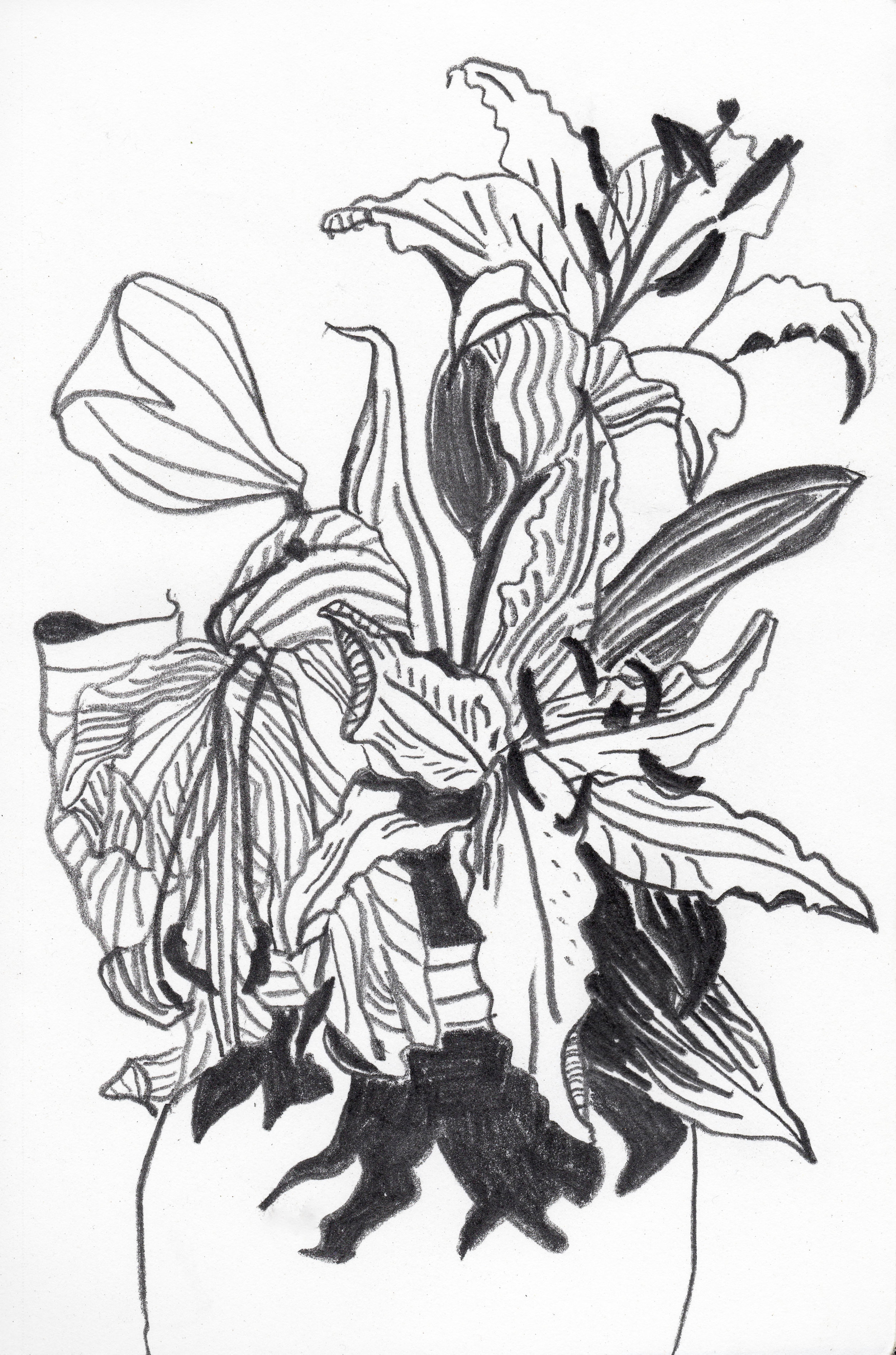 lils.jpg