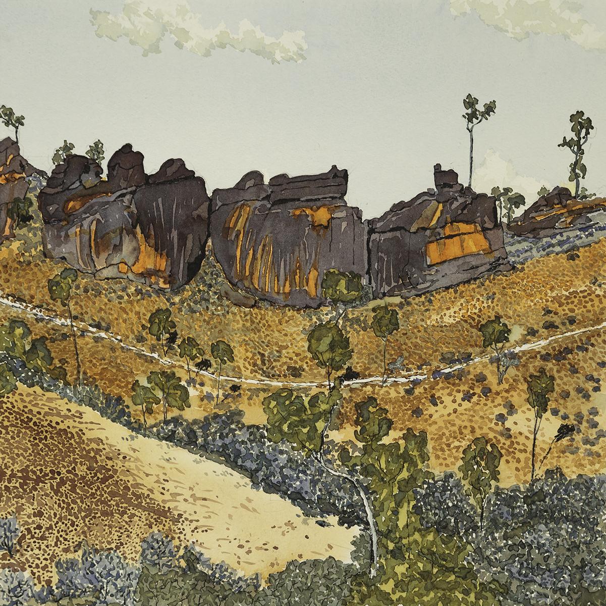 Dolomite Outcrop -Larapinta Trail NT