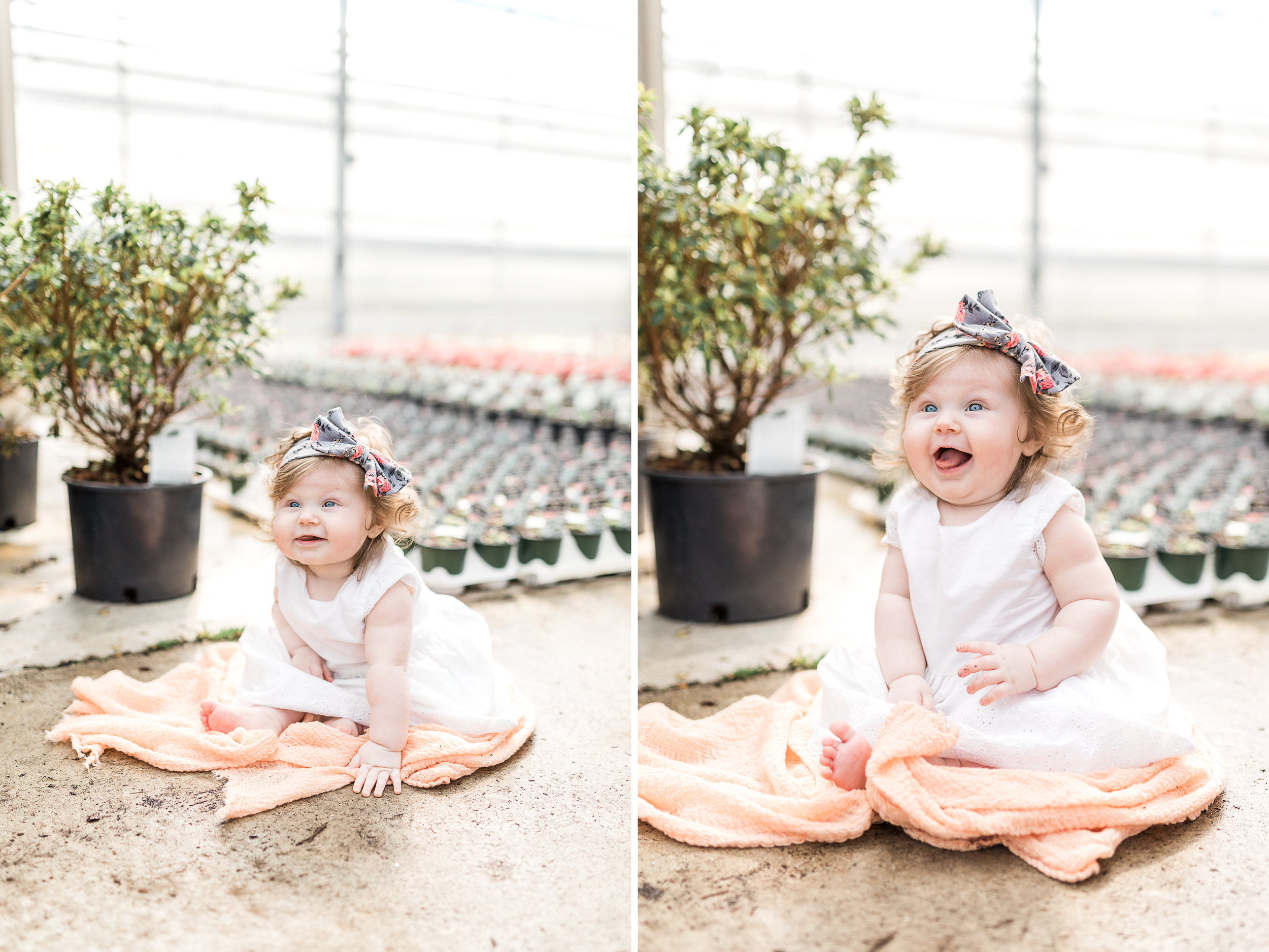 6 month baby girl milestone session at a greenhouse