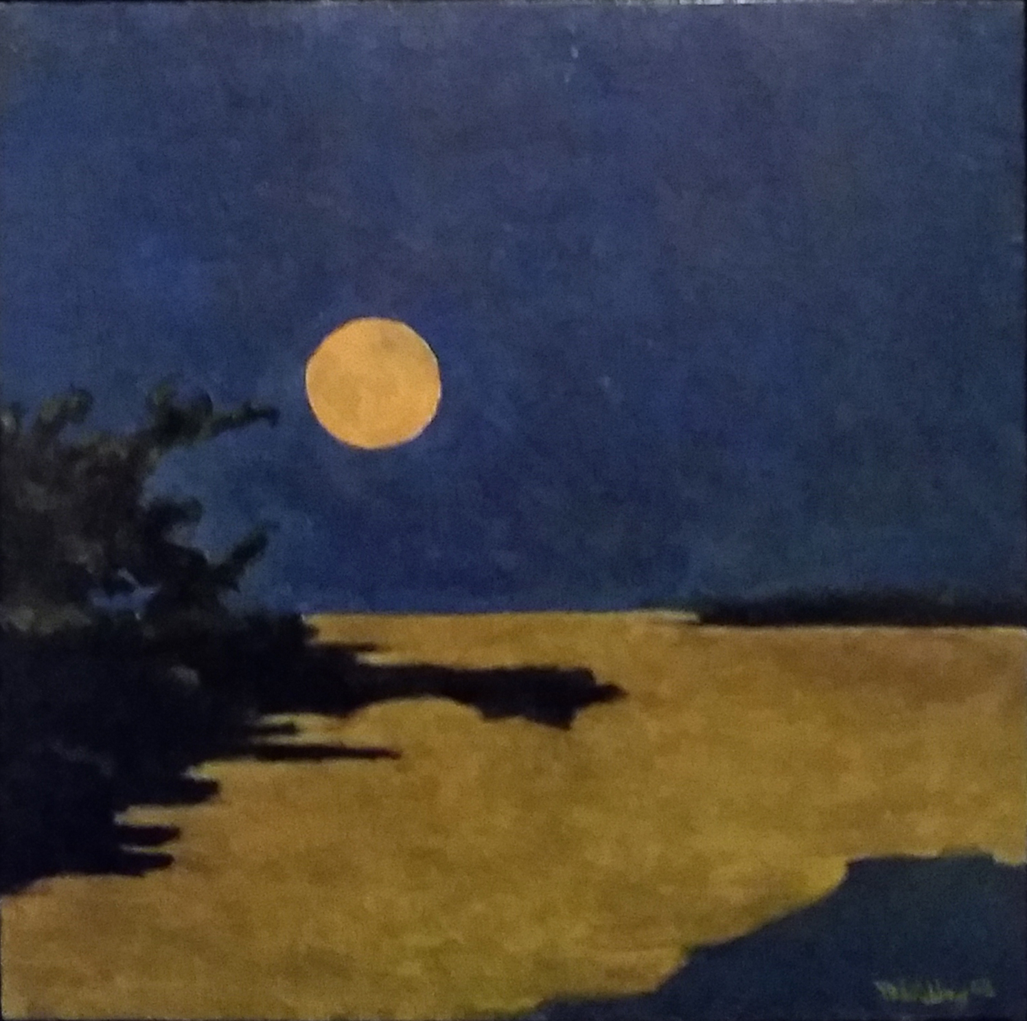 Southern Moonrise.jpg