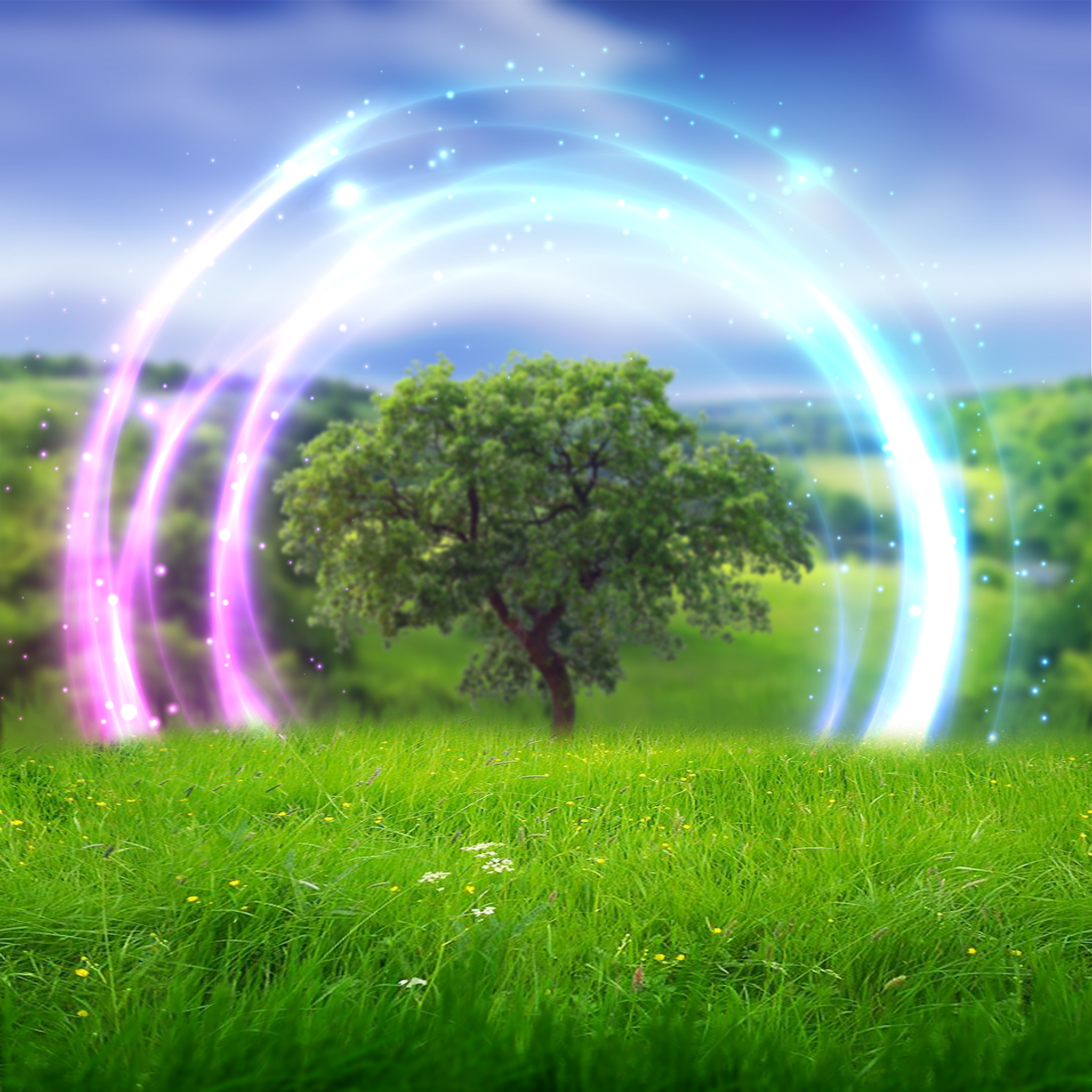 Realm-Garden-05.png