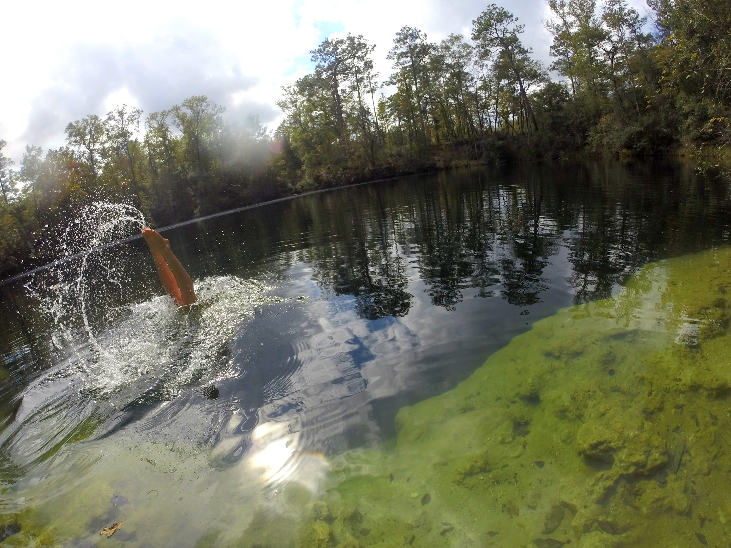 Swimming at Cherokee Sink