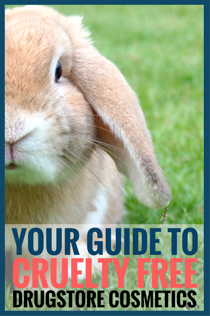 Your guide to cruelty free drugstore cosmetic brands and products pinterest pin