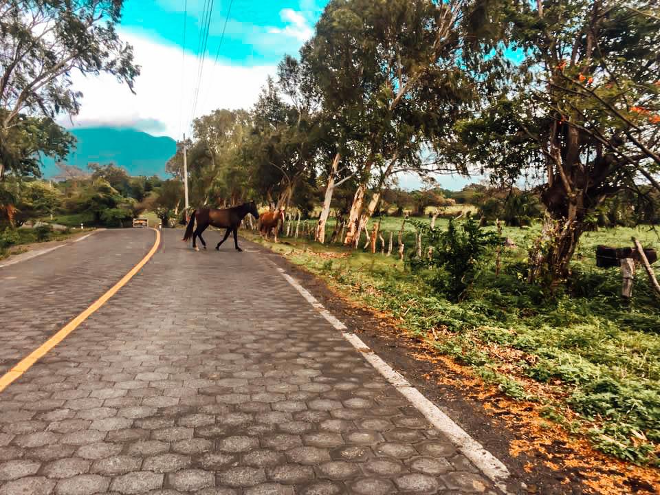 road, Ometepe, Nicaragua