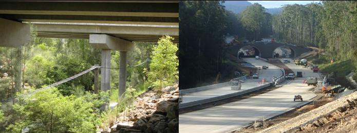 Mitigation works along the Pacific Highway upgrade. Image: Brendan Taylor