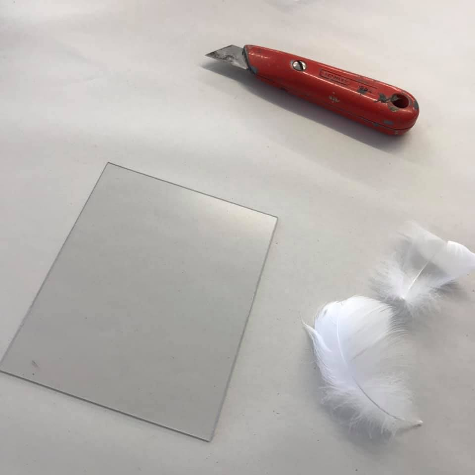 Preparing the plate for printing with feathers