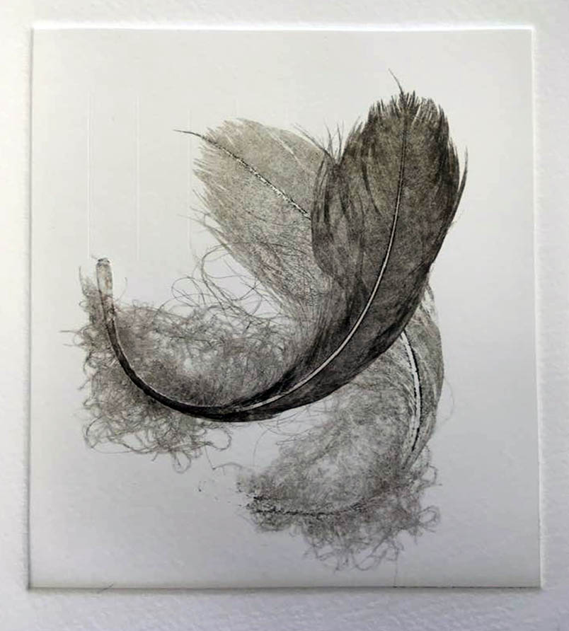 An example of inked feather print, passed through the press twice.