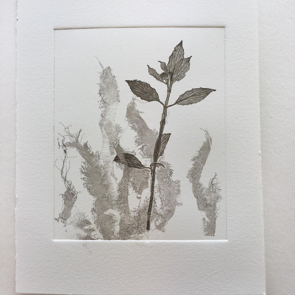 Using pressed leaves and fabric for monoprinting