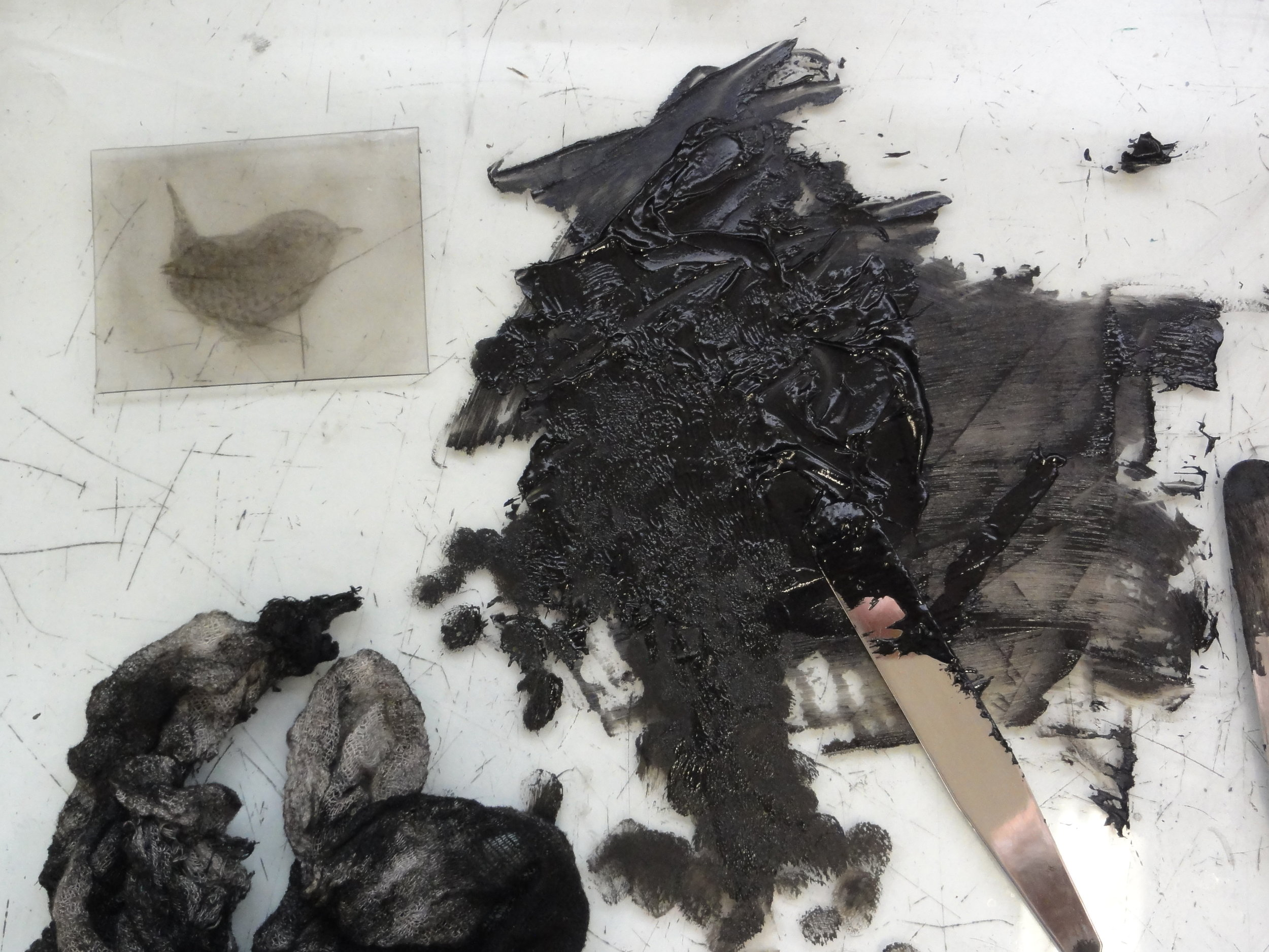 Mixing linseed oil to etching ink for drypoint print of wren