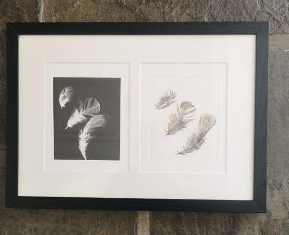 Framed mono print by Liz Fay