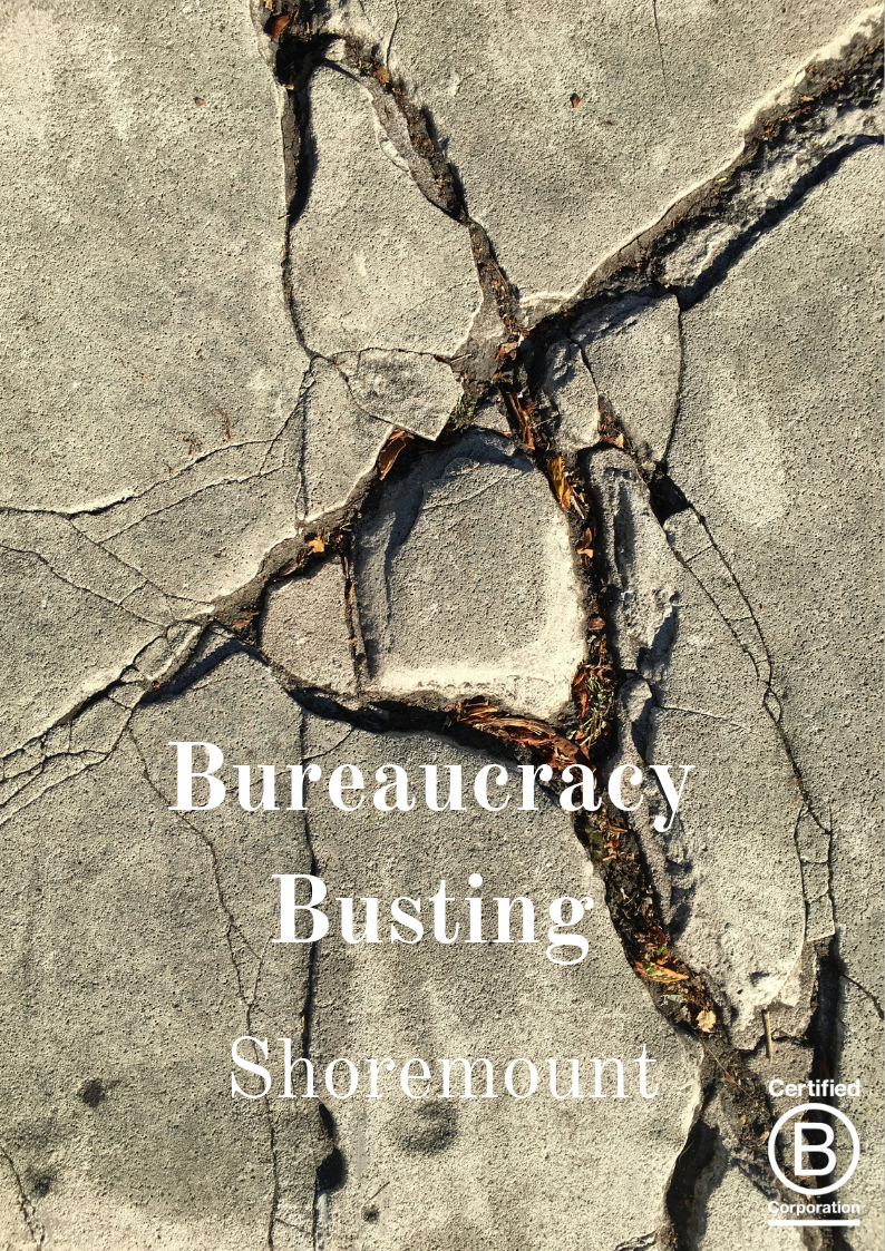 Bureaucracy Busting (1).png