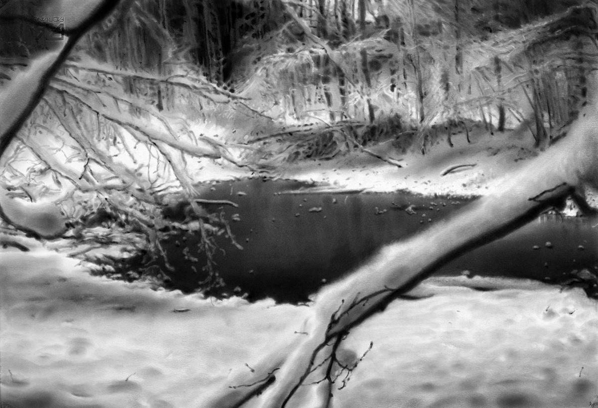 Glade, Danish woods