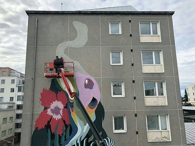 Repost from @jukkapeltosaari : Viimeinen maalauspäivä Kuopiossa, tänään tulee valmista. Muraalia väännetty tiistaista lähtien Laura Lehtisen kanssa. @lauratimantti @urbaaniry @grexart