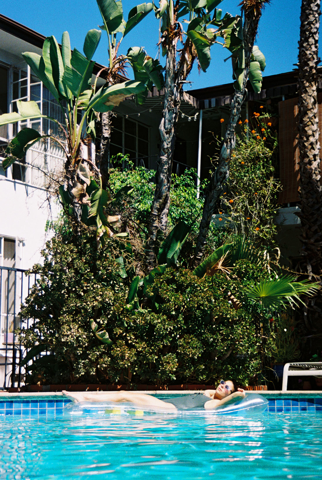 Cara swimming in West Hollywood