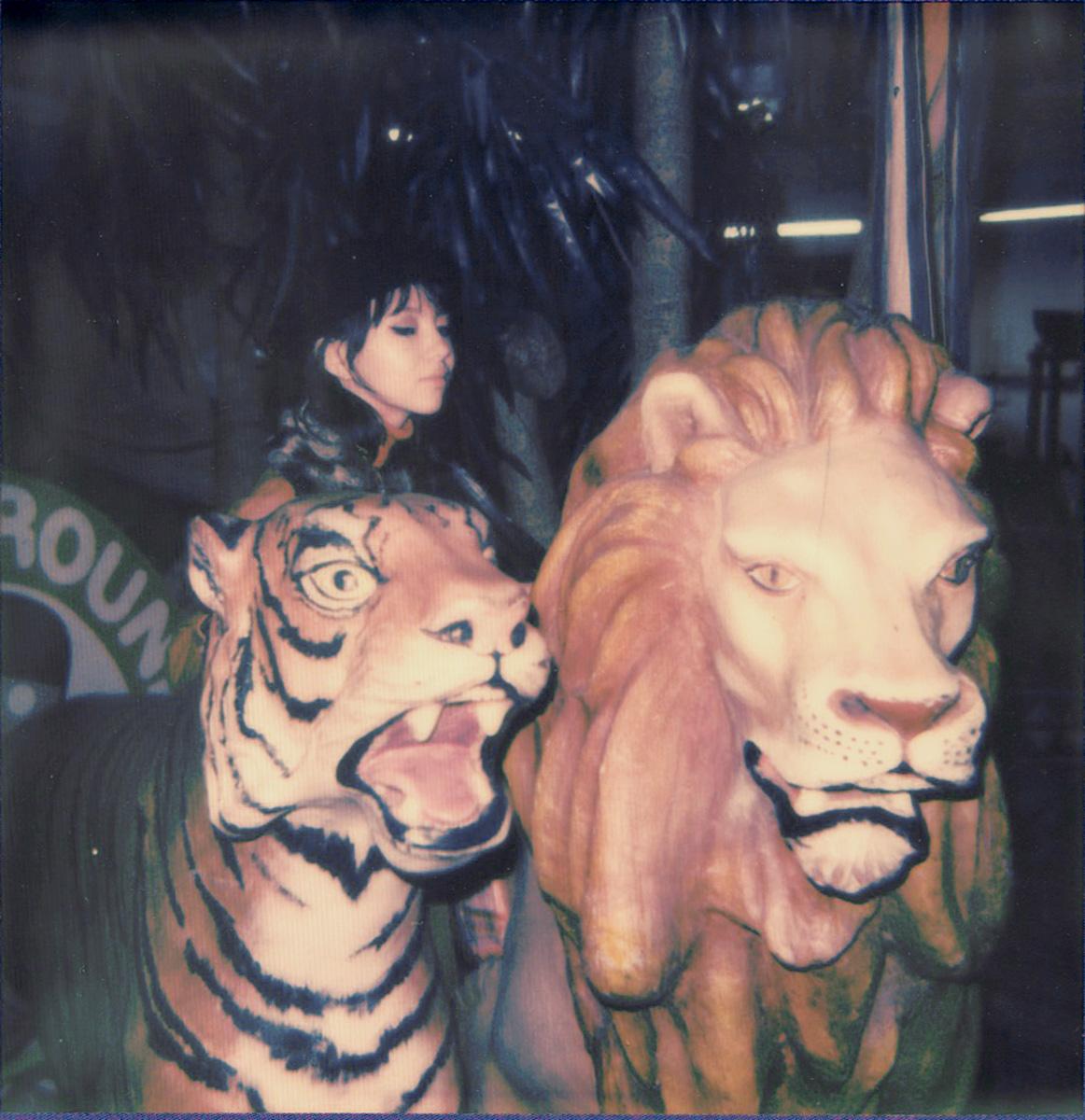 karen with lions.jpg