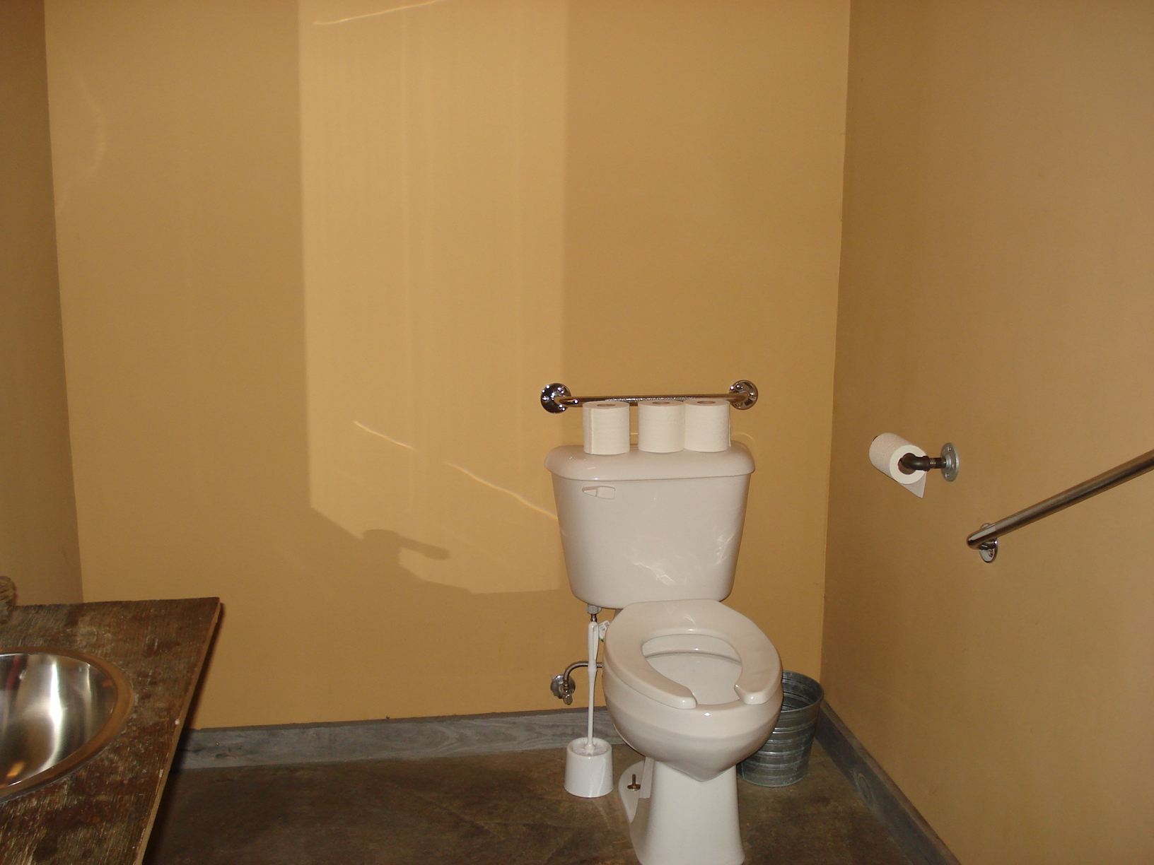 Picture of accessible washroom. Grab bars around toilet.