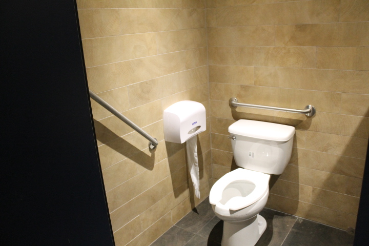 Picture of accessible washroom with two grab bars surrounding toilet.