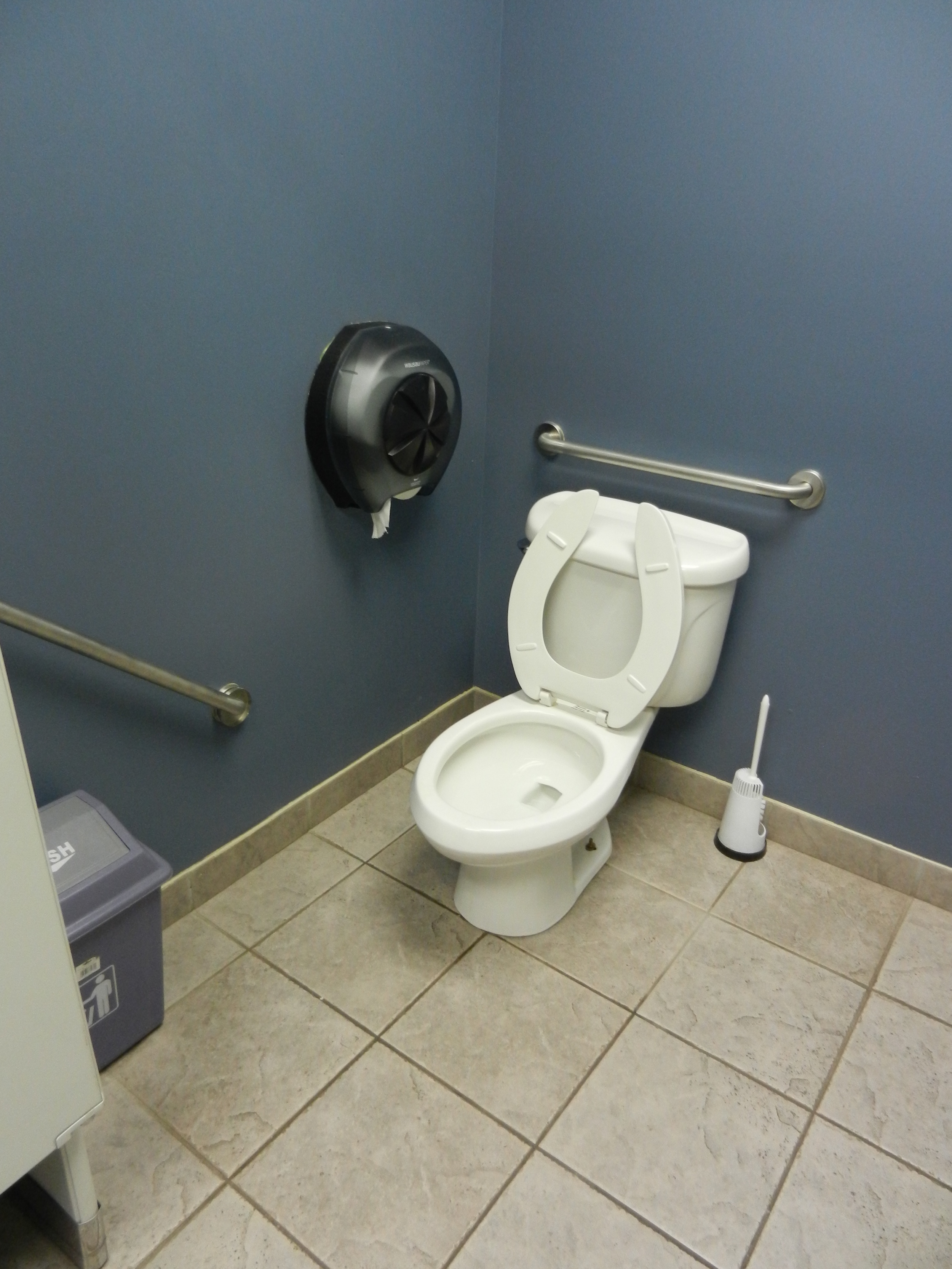 Picture of accessible bathroom (toilet).