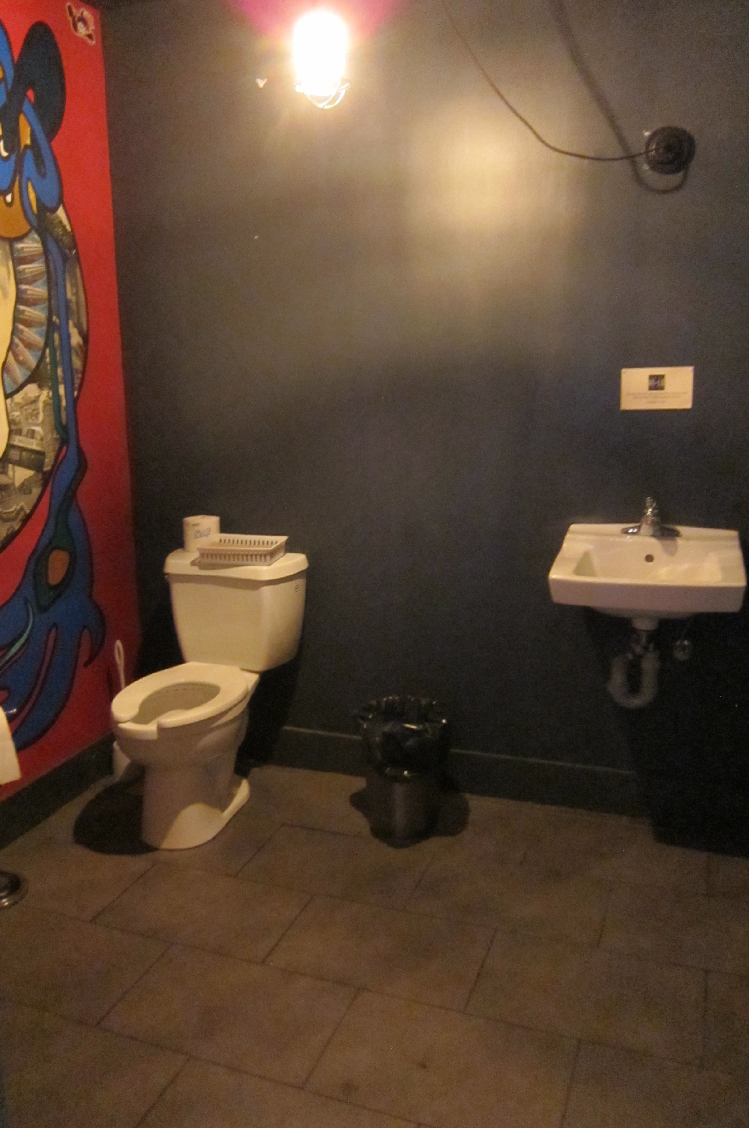 Picture of large accessible washroom.
