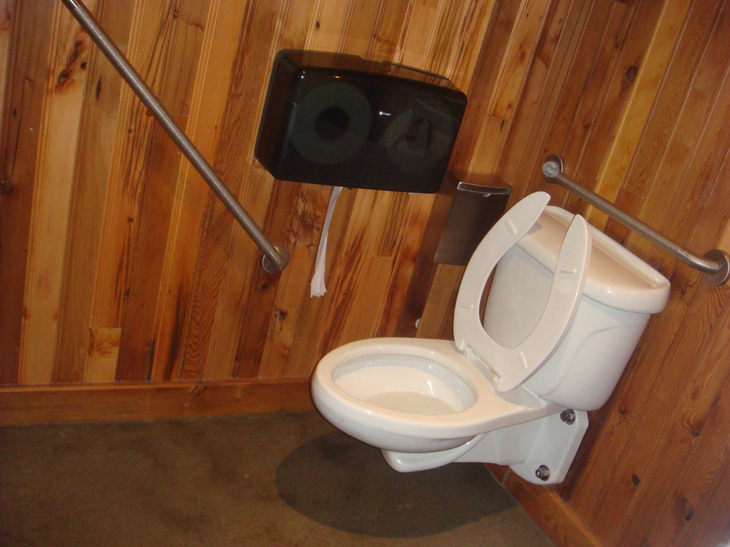 Picture of accessible washroom. Two grab bars featured.