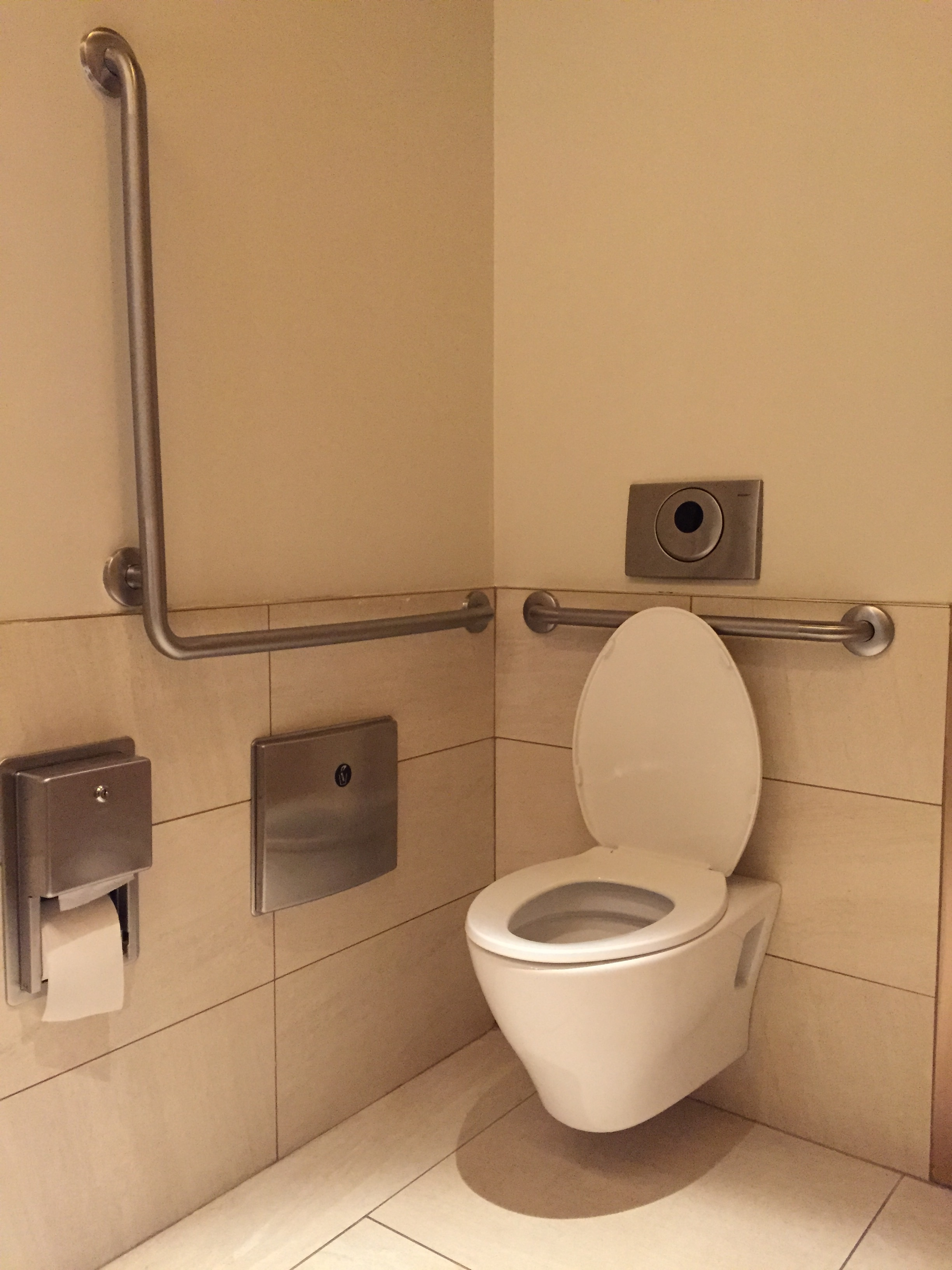 Picture of accessible washroom. L-shaped grab bar featured.