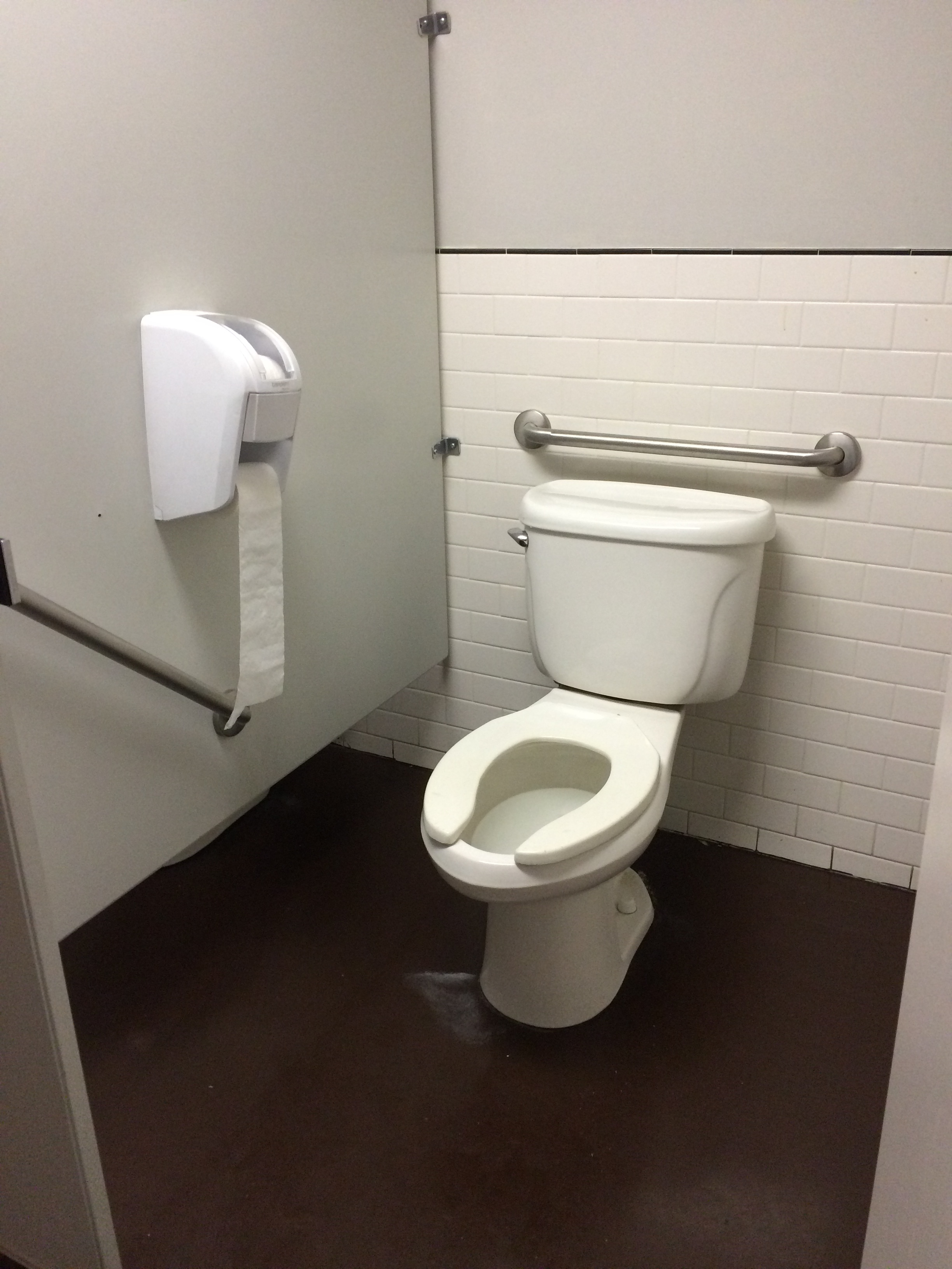 Picture of wheelchair accessible washroom stall