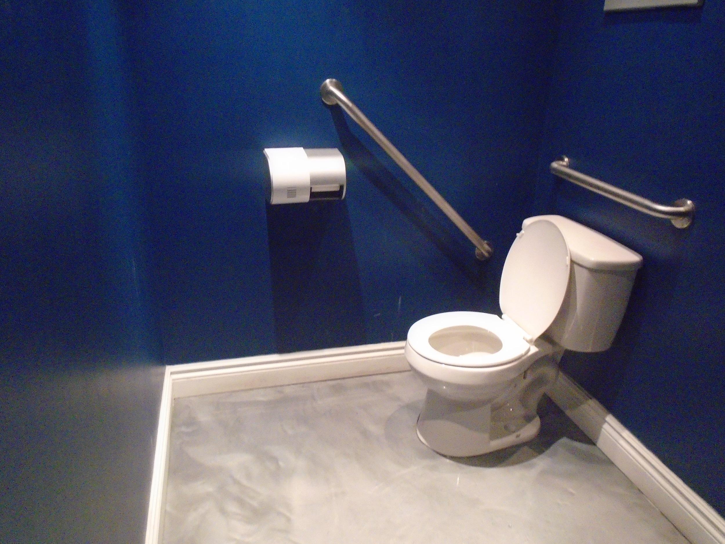 Bathroom with two grab bars beside and behind the toilet