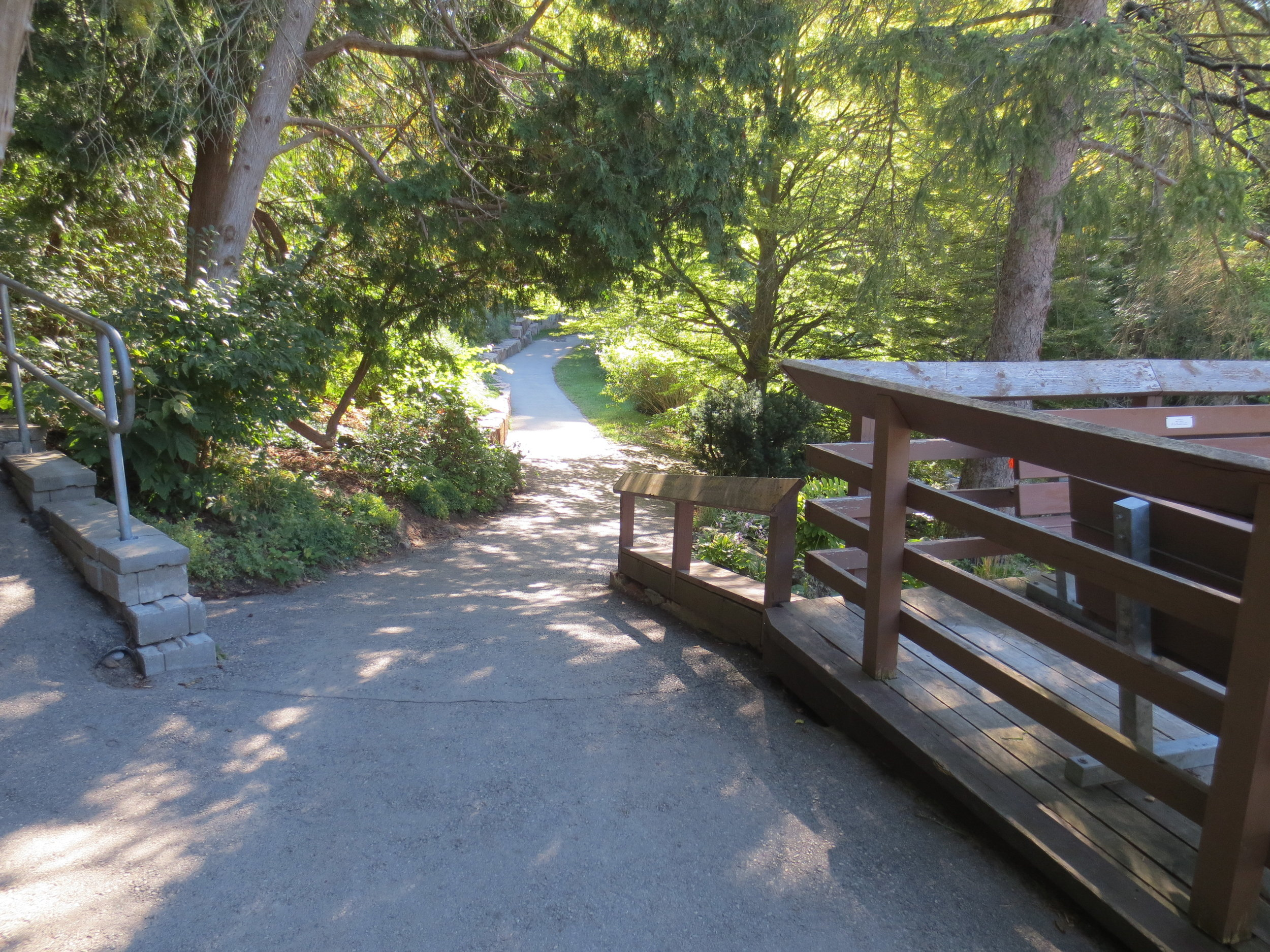 steepest slope on accessible path.JPG