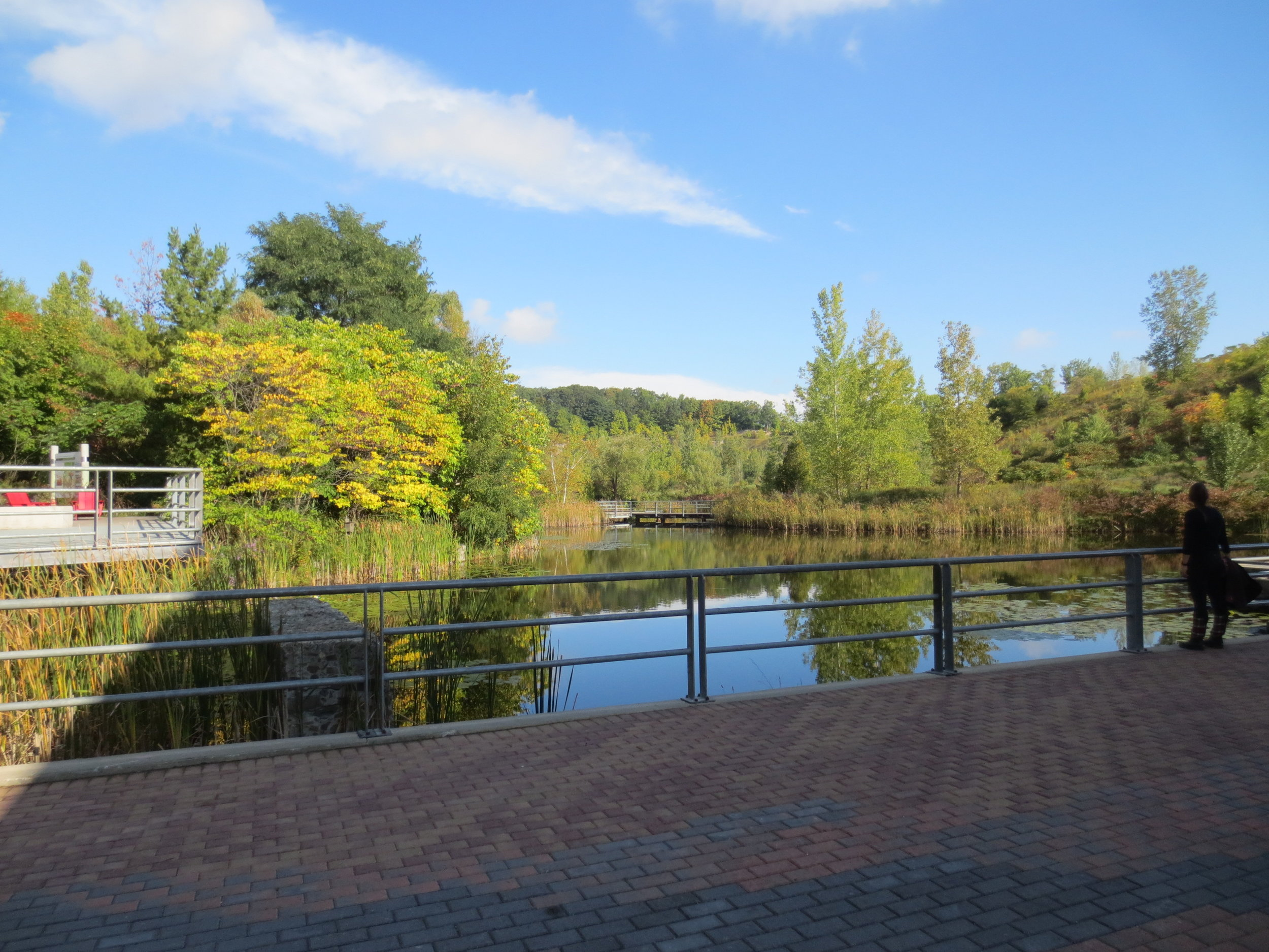 Picture of accessible walkway with lookout to the pond