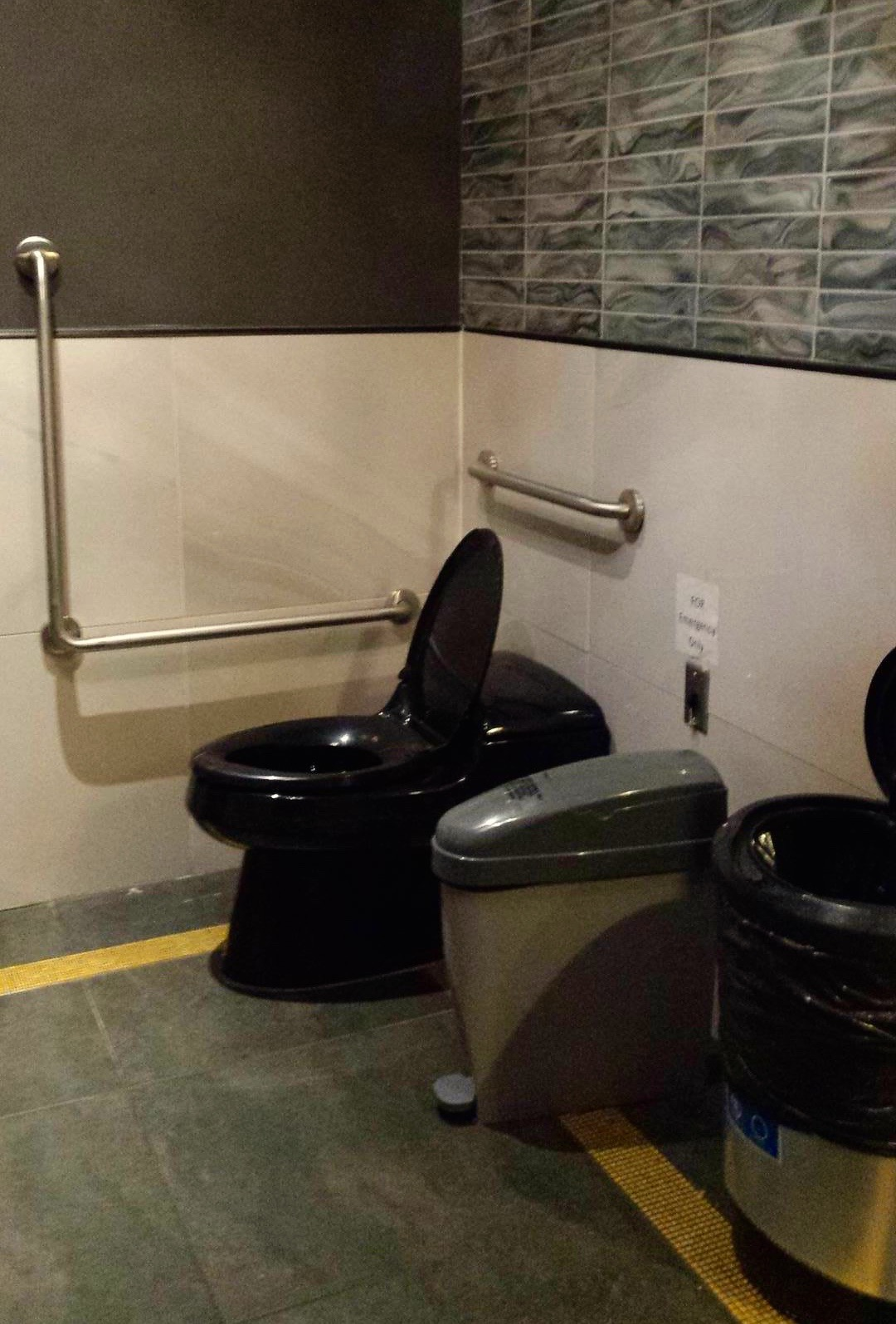 Toilet with grab bars in single occupancy washroom