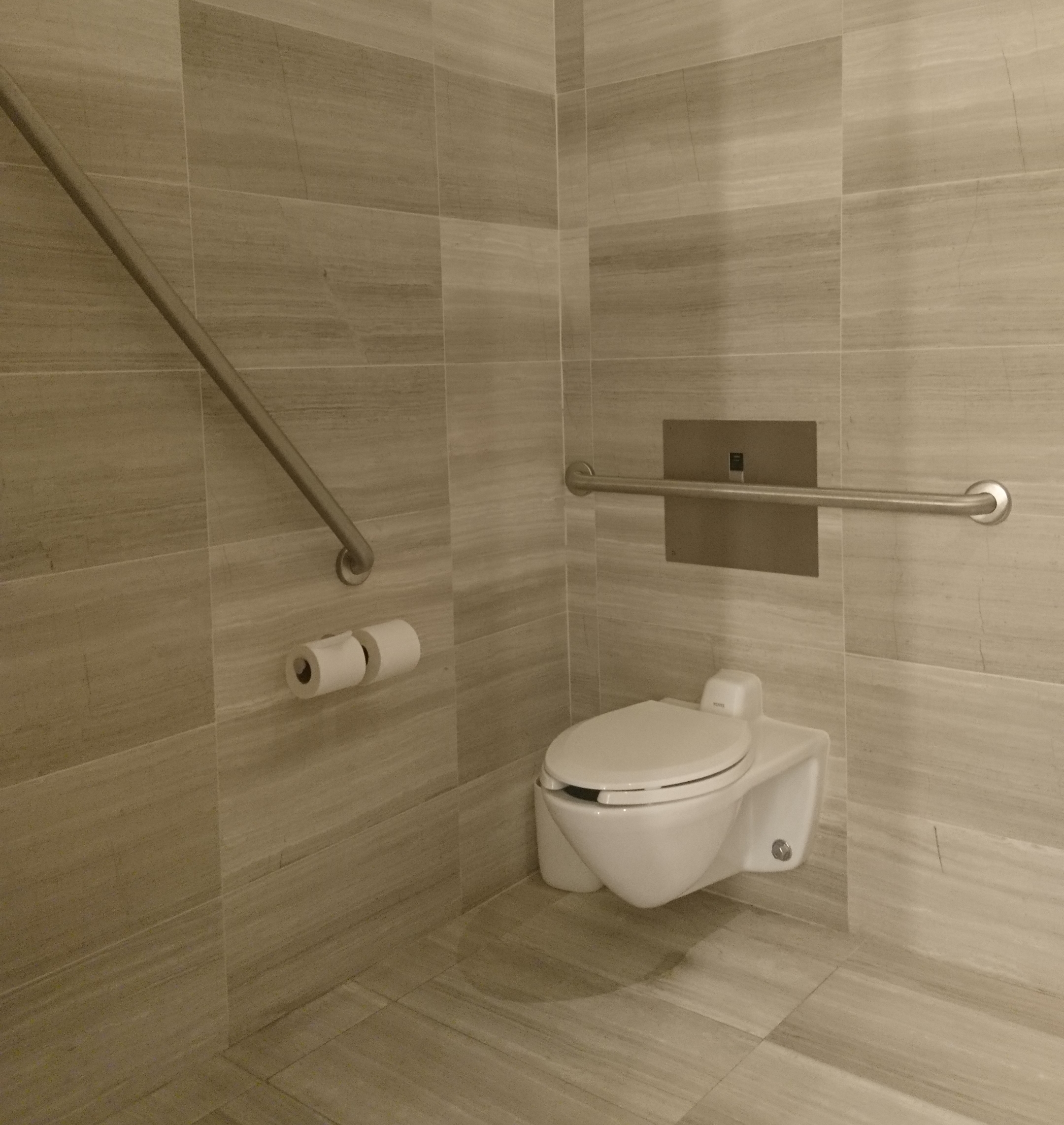 Picture of grab bars and accessible space in washroom stall