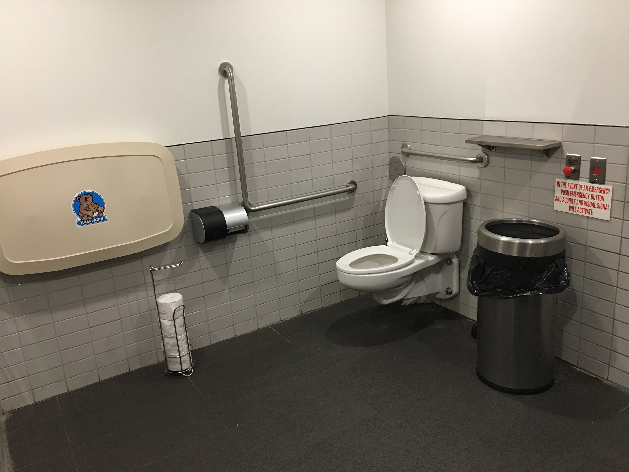 Picture of accessible washroom at Snakes & Lattes