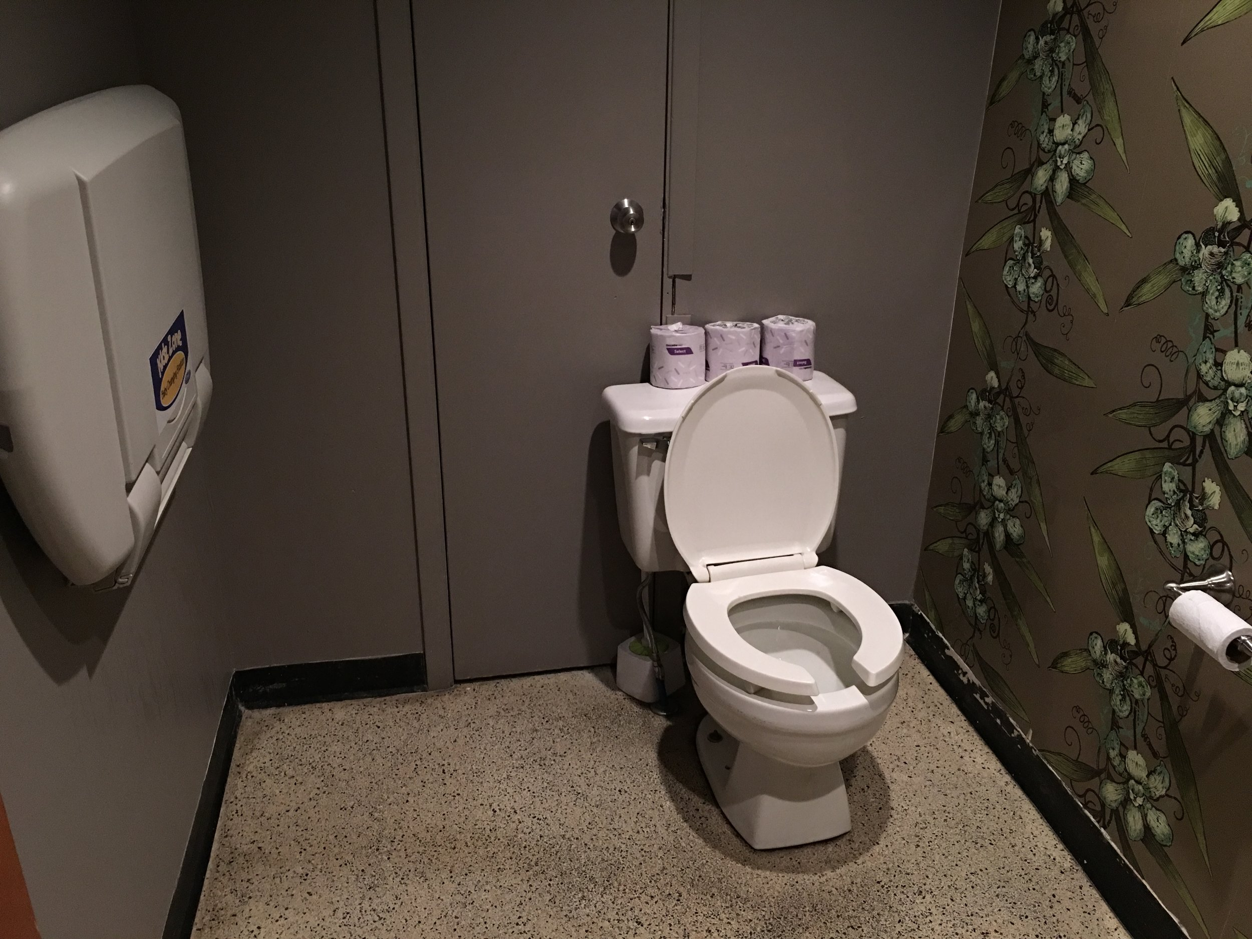 Picture of washroom without grab bars