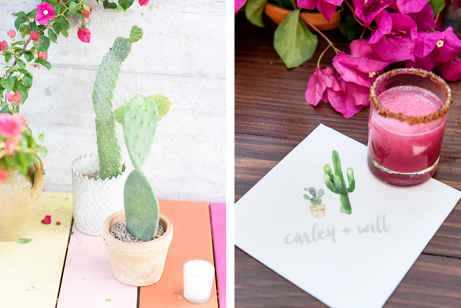 cactus themed details